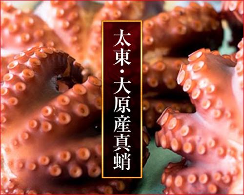 千葉ブランド水産物「太東大原産マダコ」
